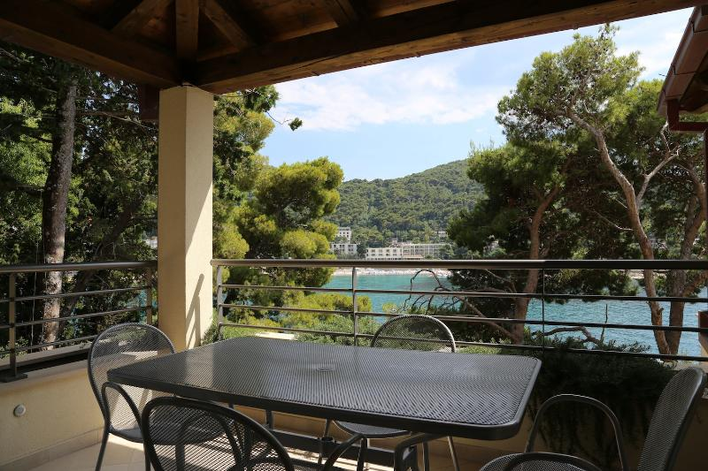 Exclusive apartment in Dubrovnik! - Image 1 - Sveti Martin na Muri - rentals
