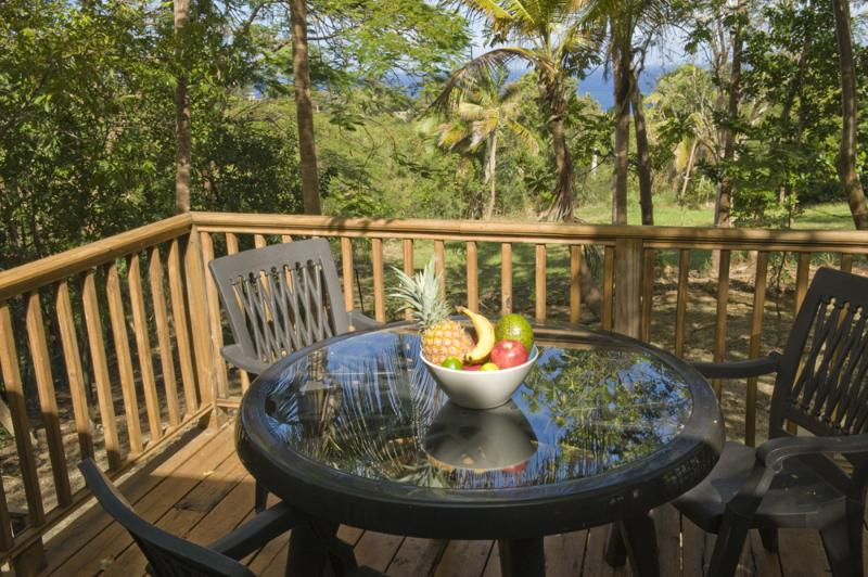 Deck with Bowl of Fruit - Casa Linda -  2 minutes in car from Sandy Beach - Rincon - rentals
