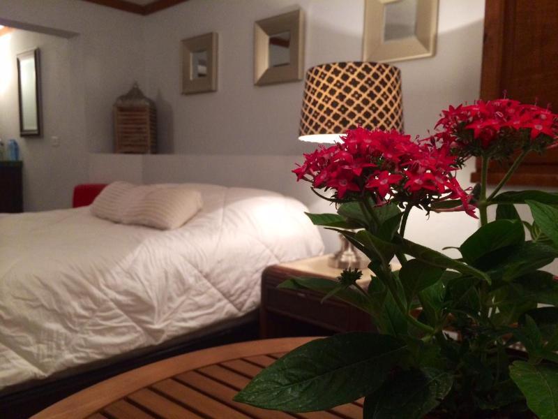 Cozy Studio in Puntas Hillside, Wi-Fi & A/C - Image 1 - Rincon - rentals