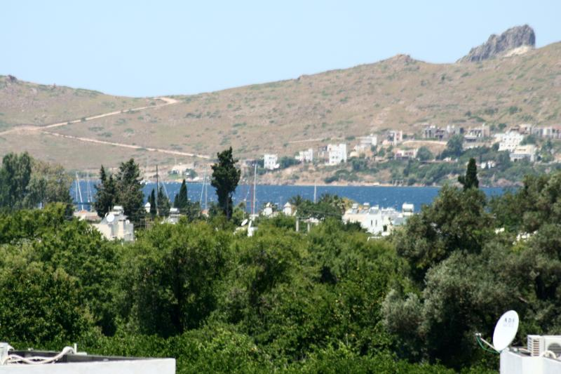 Sea View Apartment in Yalikavak (nr Bodrum) Turkey - Image 1 - Yalikavak - rentals
