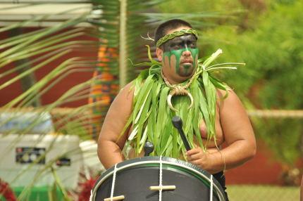 Tahitian festival drummer - Oceanfront,  front master bedrm, great view - Kapaa - rentals