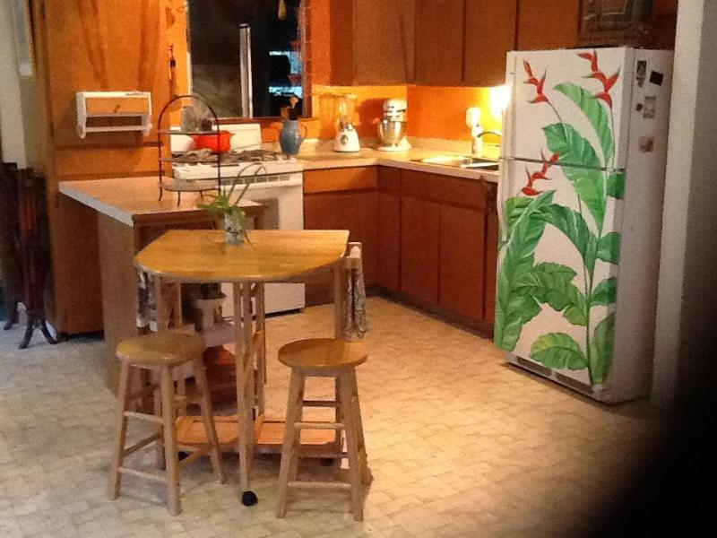 Our tropical kitchen which is gourmet equipped - Magical Hawai'i Nature Forest Retreat - Pahoa - rentals