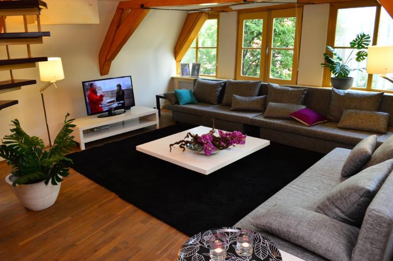 Anat Apartment - Dam Square - Image 1 - Amsterdam - rentals
