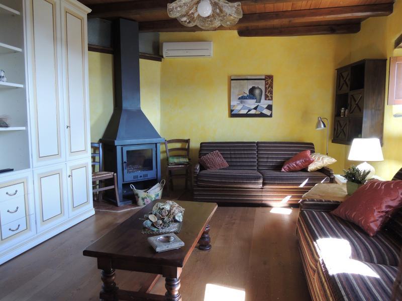 salone appartamento ZAFFIRO due divani climatizzato con camino a legna per vacanze piacevoli - Casa Zaffiro in Umbria con Piscina Sauna Giardino - Ferentillo - rentals