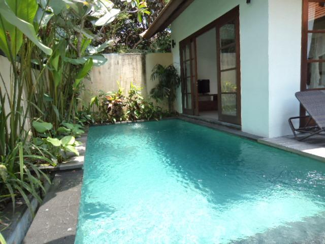 priate villa double bed with pool - villa  in bali at artis village - Gianyar - rentals