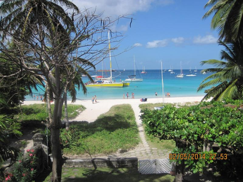 Day catamarans on their Turtle trip - Super on the beach penthouse suite of  Brick House - Bridgetown - rentals