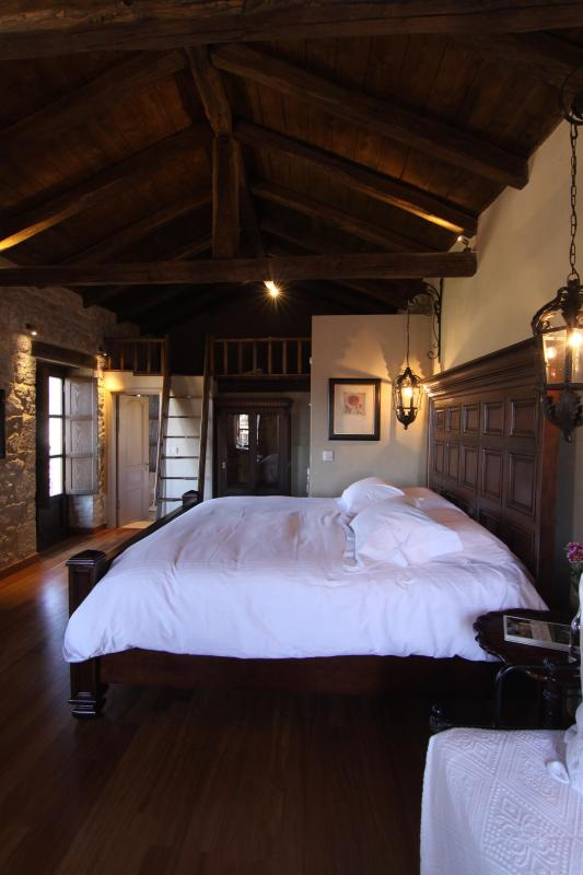 Villa Vager Suite Room - Image 1 - Levidi - rentals