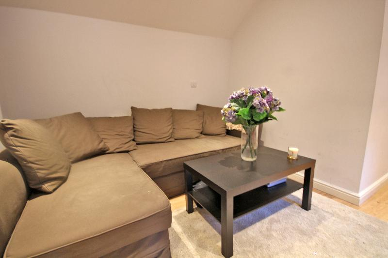 Pleasant 2 bedrooms flat in Piccadilly - Image 1 - London - rentals