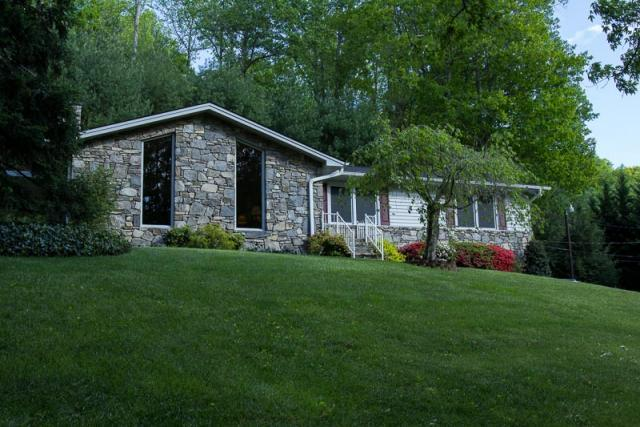 Front yard - Wilderness Retreat - Secluded Retreat 12 Miles To Downtown Asheville And The Biltmore Estate (Pet Friendly) - Asheville - rentals