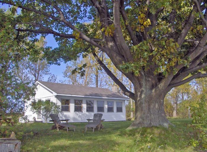 Sandbanks Lakeshore Cottage - Image 1 - Prince Edward County - rentals