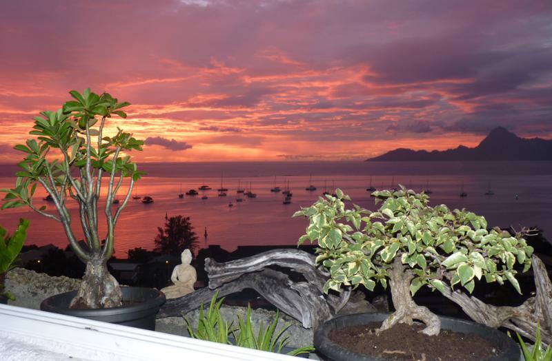 Balcon du Lotus - Image 1 - Punaauia - rentals