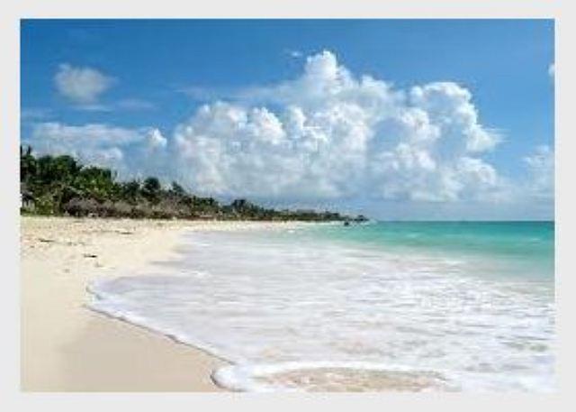 THE BEST LOCATION - Mamitas Beach - 5th avenue Playa del Carmen - Great Price - Image 1 - Playa del Carmen - rentals