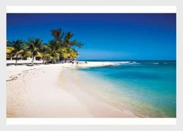 GREAT LOCATION + Mamitas Beach + All Services + Playa del Carmen Vacation - Image 1 - Playa del Carmen - rentals