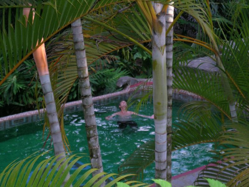 Bliss in the Pool - Private and Spacious Three Bedroom/Three Bath Exotic Tropical Villa near Sea and Town - Manuel Antonio National Park - rentals