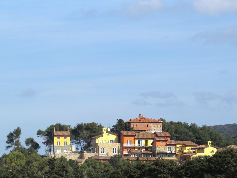 Apartment in San Vincenzo, with sea-view - Image 1 - Collegno - rentals