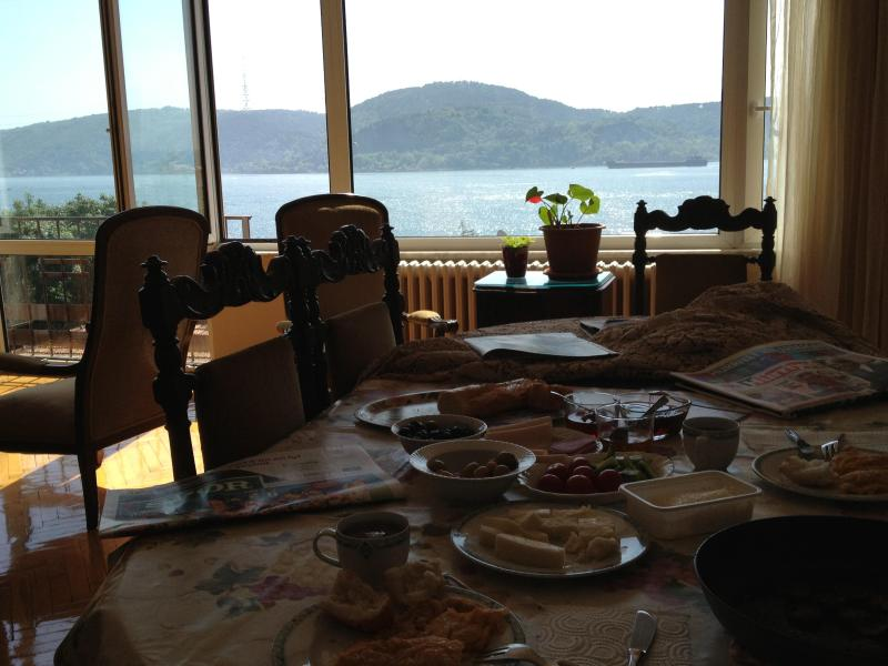 Living room, your breakfast view:) - Bosphorus Flat in Istanbul - Istanbul - rentals