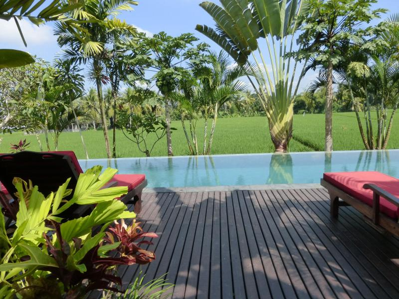 Quite possibly one of the most amazing locations in Ubud! - Bali Harmony Villa-Million$ Views in Ubud ONLY $79 - Ubud - rentals