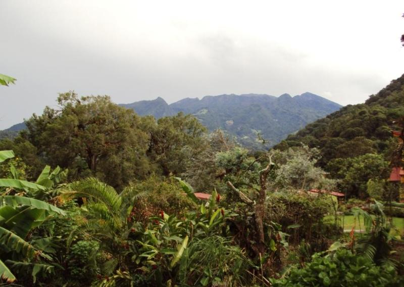 Volcan Baru from your deck - Fine Casita with Volcano View - Boquete - rentals