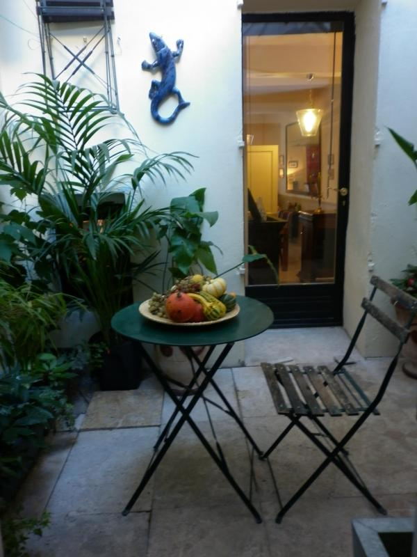 COUR   ( 10 m2 ) - Wonderful 2 Bedroom Apartment with a Patio, in Avignon - Avignon - rentals