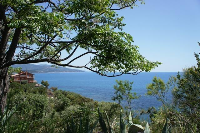A nice Villa with charme with private beach... - Image 1 - Marina di Casal Velino - rentals
