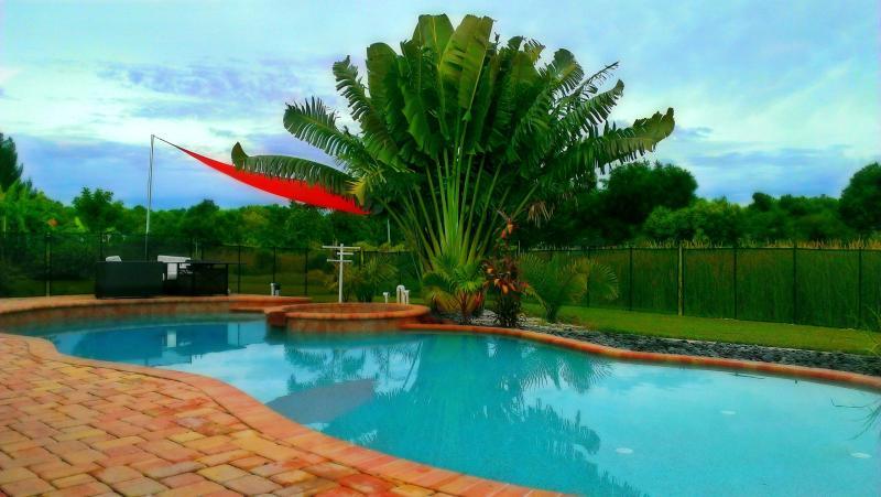 Harmony Cottage - Image 1 - Sarasota - rentals