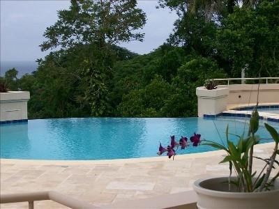 Infinity Salt Water Pool overlooking the sea - Sensational 5 Bedroom Villa with Ocean View in Montego Bay - Montego Bay - rentals