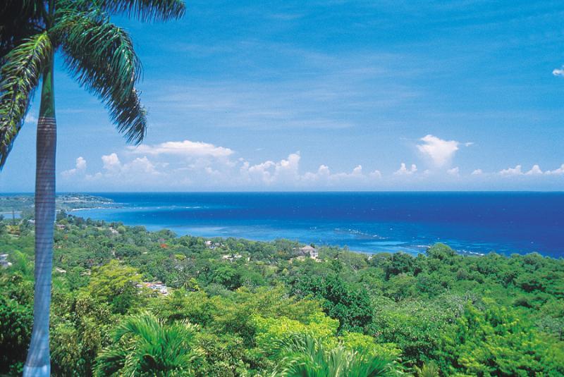 Elegant 3 Bedroom Villa with Private Pool in Montego Bay - Image 1 - Montego Bay - rentals