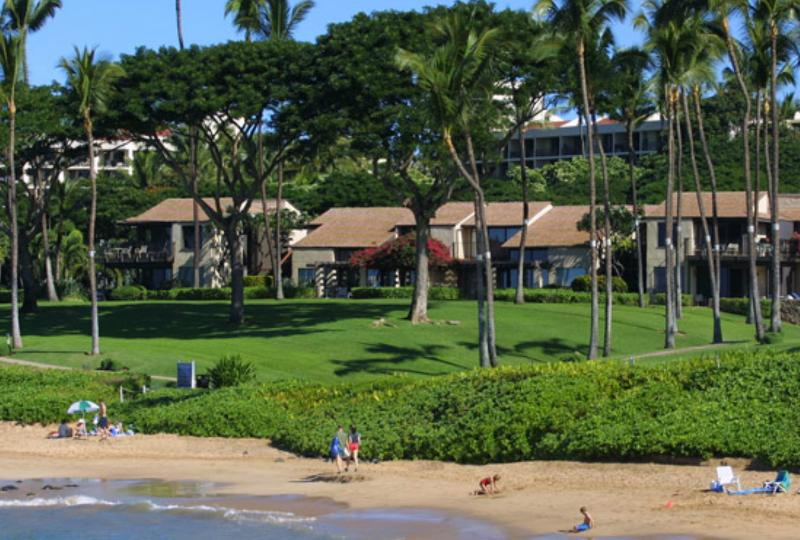 One of the best beaches in all of Maui for swimming and snorkeling! - Wailea Elua - 2-BR Beachfront Resort Condos - Wailea - rentals