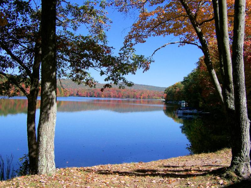 Lake front view from condo unit 1 - Lake 2 bedrm Condo Quail Hollow Drums Poconos, PA - Drums - rentals