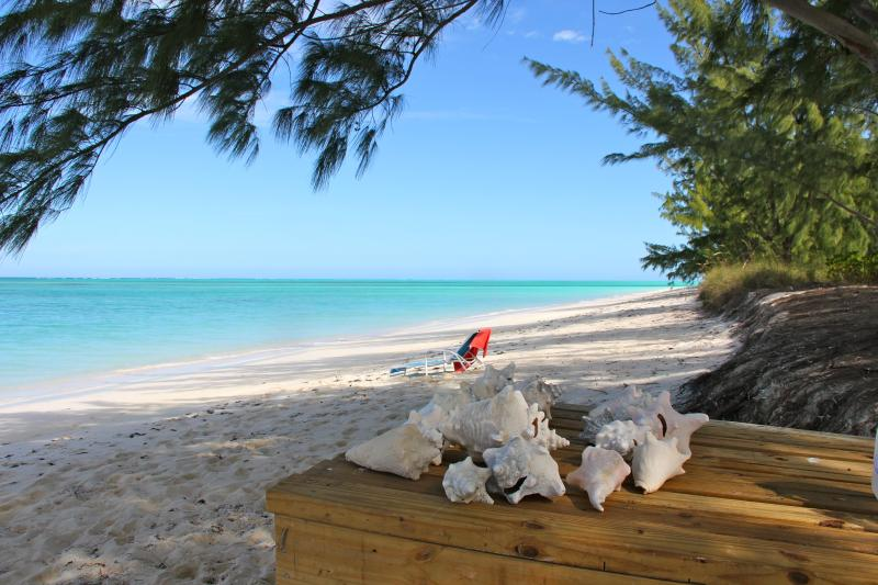 Truly island paradise... - Former house of the Premier/ President - Whitby - rentals
