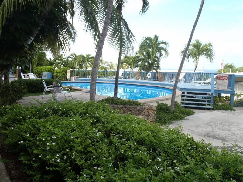 View of the pool and deck area - Clean 1bedroom with a turquoise view - Christiansted - rentals