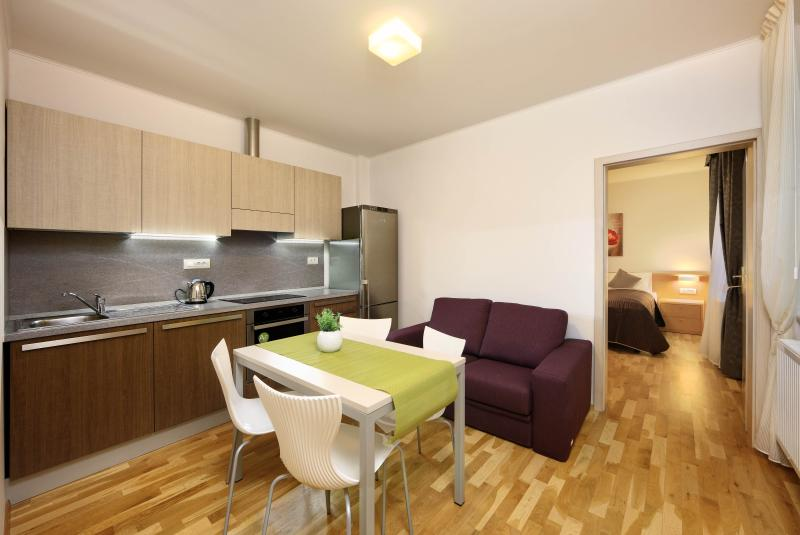 Apartment features one bedroom, kitchen and bathroom - 1-bedroom Apartment / Salvator Superior Apartments - Prague - rentals
