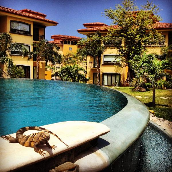 Poolside at Tranquilo Village - Tranquilo Village - A real Costa Rican experience - Huacas - rentals