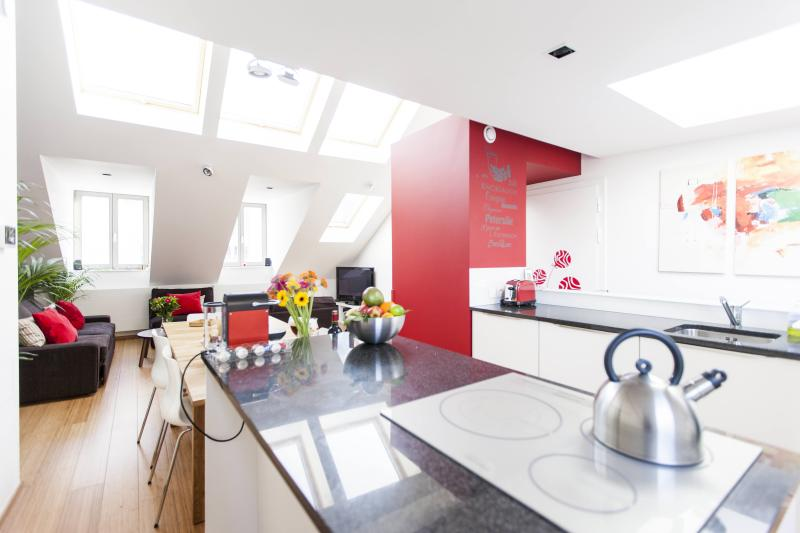 Fantastic Duplex in Heart of Brussels - Image 1 - Brussels - rentals