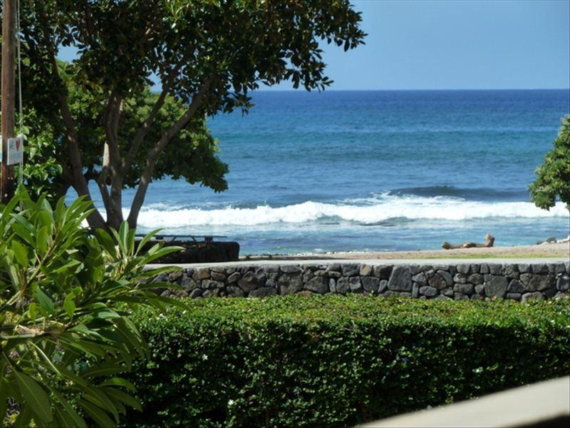 View from Lanai - Upscale Seaside Studio @ Downsized Price! - Kailua-Kona - rentals