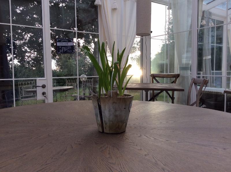 breakfast room - Locanda di Terramare, naturist b&b in Tuscany - Rosignano Marittimo - rentals