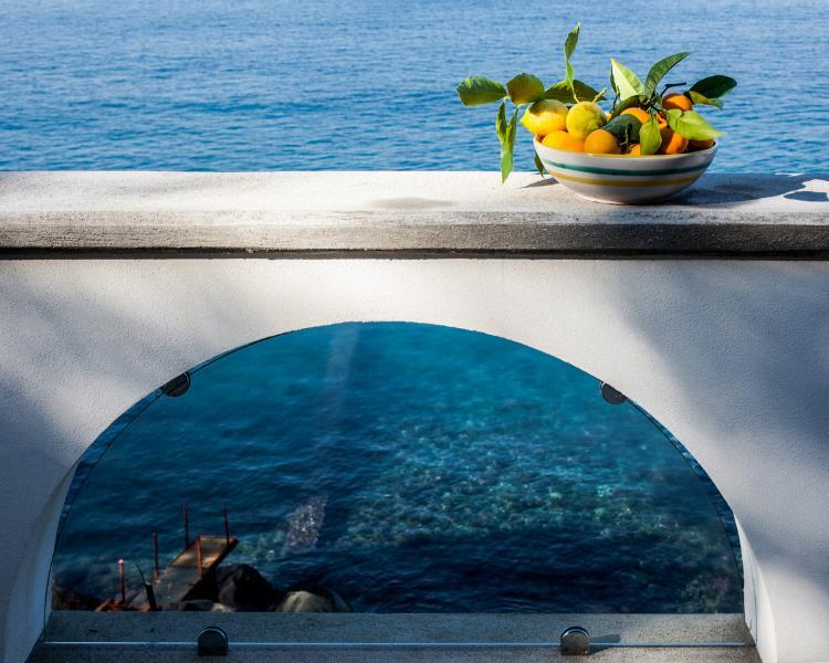The view - Vera e il Vervece, Gorgeous apartment on the Sea - Massa Lubrense - rentals