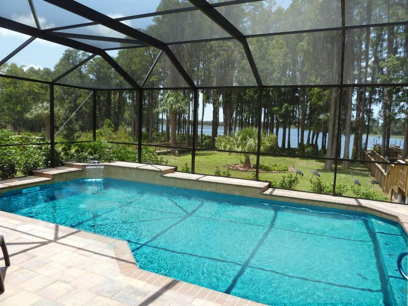 Backyard - Florida, villa, vacation home, pool, golf, fishing - New Port Richey - rentals