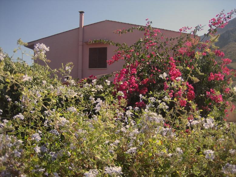 Villa degli Ulivi - Image 1 - Castellammare del Golfo - rentals