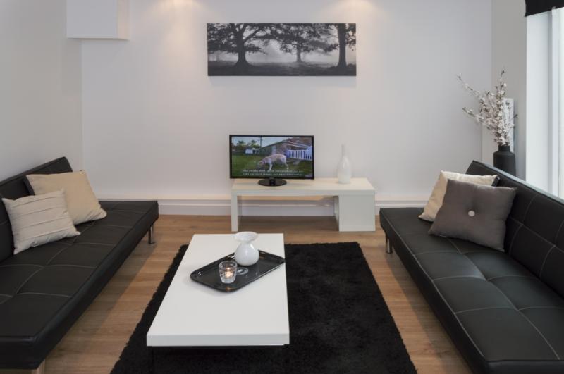 Niagara B - Image 1 - Amsterdam - rentals