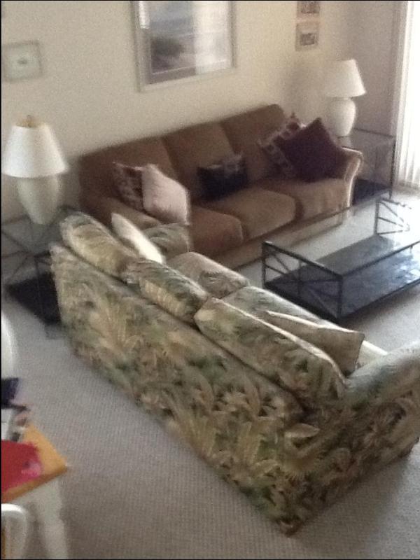 living room - Wrightsville Beach, NC BEAUTY - Wrightsville Beach - rentals