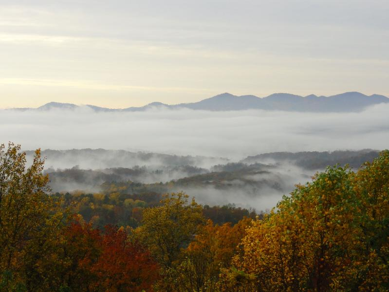 Views! - Stunning Mountain Views, 3 Decks, TV, Free Wi-fi - Asheville - rentals