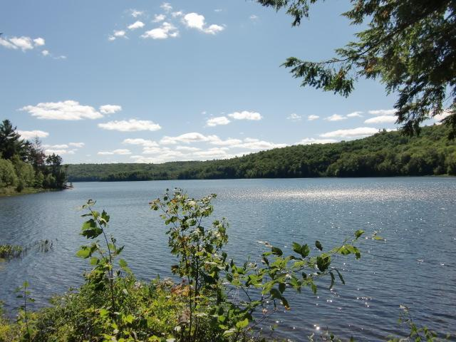 Lake views from the walking path - Comfortable townhouse on pristine lake! - Grantham - rentals