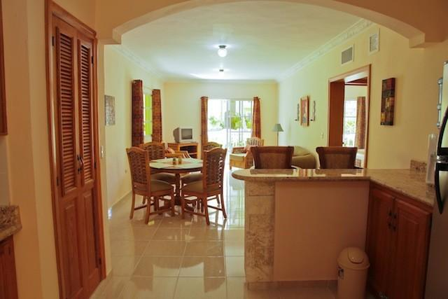 Living Room - Fully Furnished 1BR Vacation Rental Palm Suite - Punta Cana - rentals
