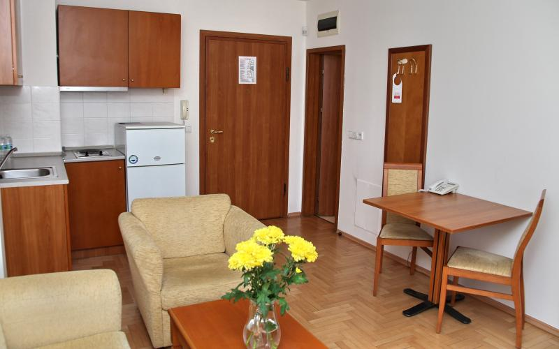 Studio - Dunav Studio - Sofia - rentals