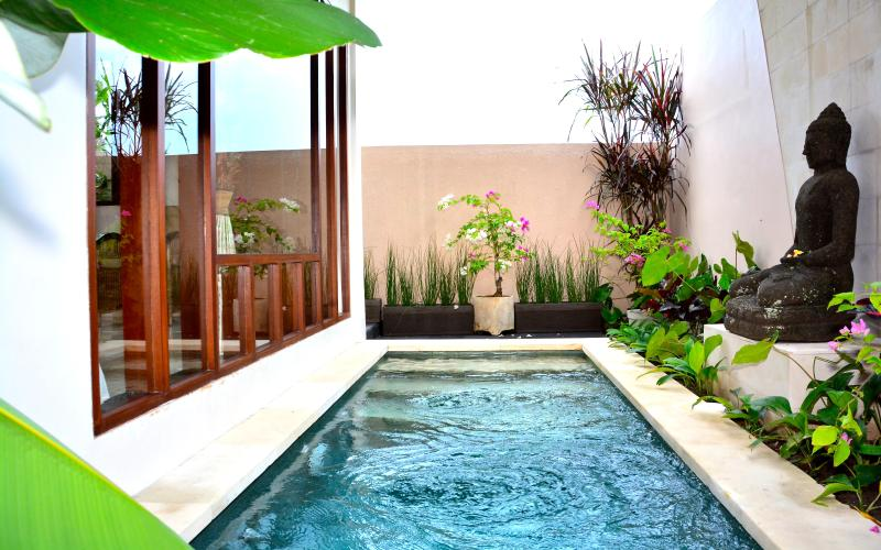 Your own private pool - NEW! Villa Siri -1BR In Ricefield - Walk to Ubud - Ubud - rentals