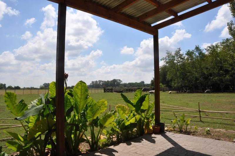 Outside the house - A beautiful farm in the Pampas - Argentina - Lobos - rentals