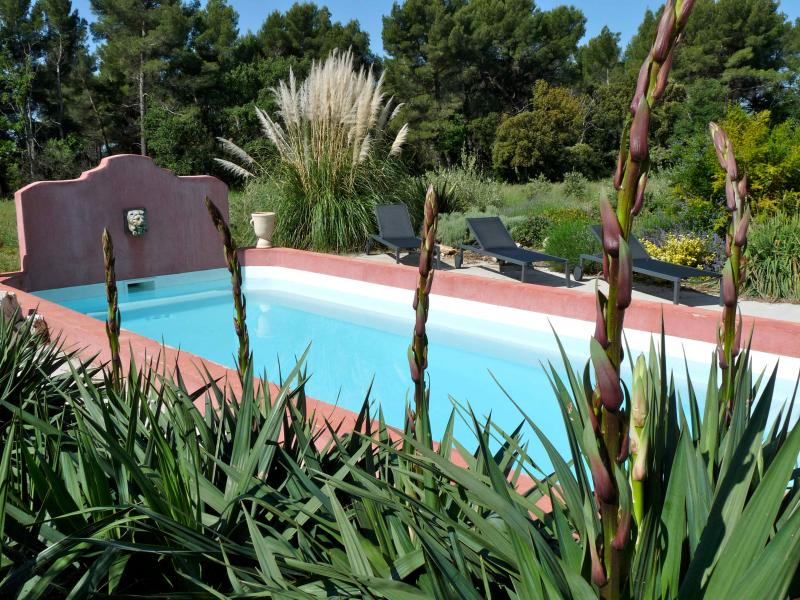 Pool - Pet-Friendly 4 Bedroom Villa with a Pool, Between Olive Trees and Lavendar - Puyricard - rentals