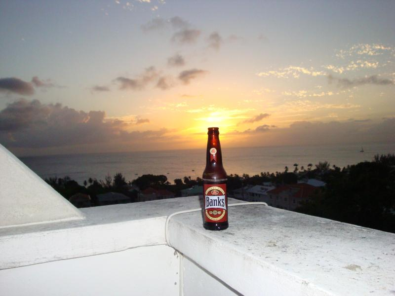 Sunshine in a bottle! Banks Beer - Costa Vista #2 ... Paradise Has a New Address! - Prospect - rentals