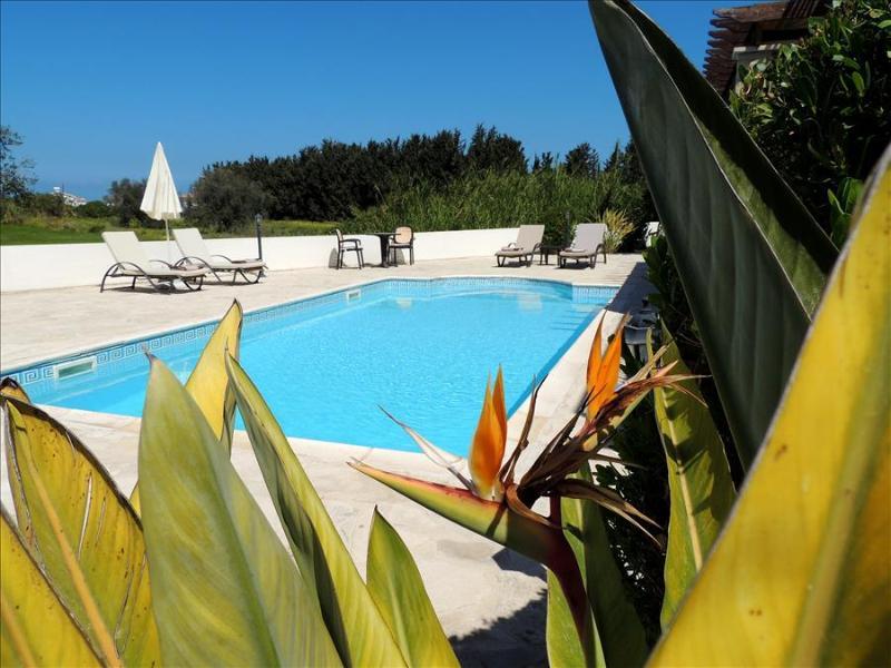 Villa Golden Coast 5 - Image 1 - Polis - rentals